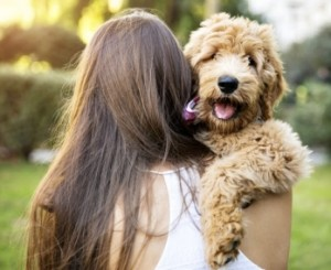 Girl Holding Dog at the Park in Summer