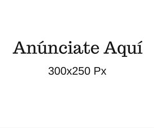 300x250 Anuncio 1