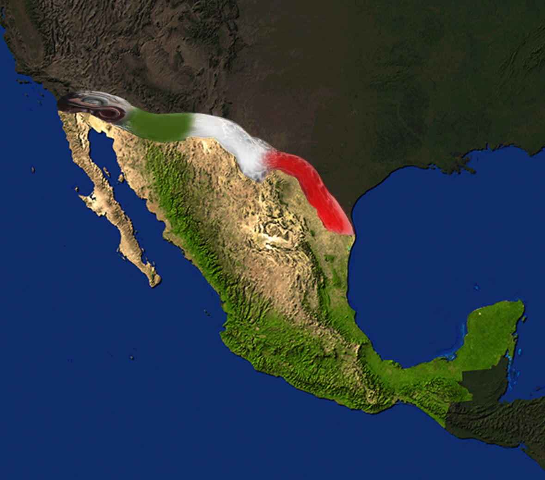 muralla mexicana